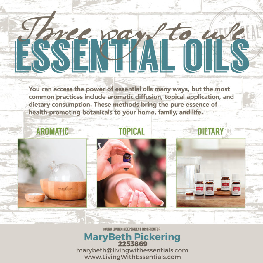 Essential Oils in the Bible - How to Use Essential Oils