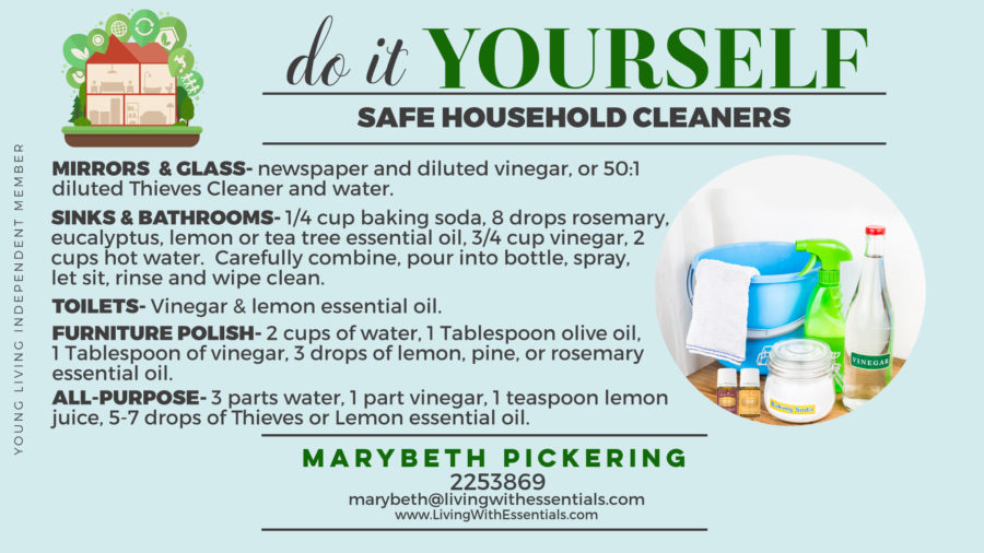 Toxin-Free Family DIY Cleaners
