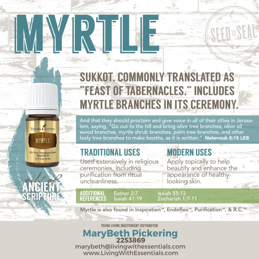 Essential Oils in the Bible - Myrtle Essential Oil