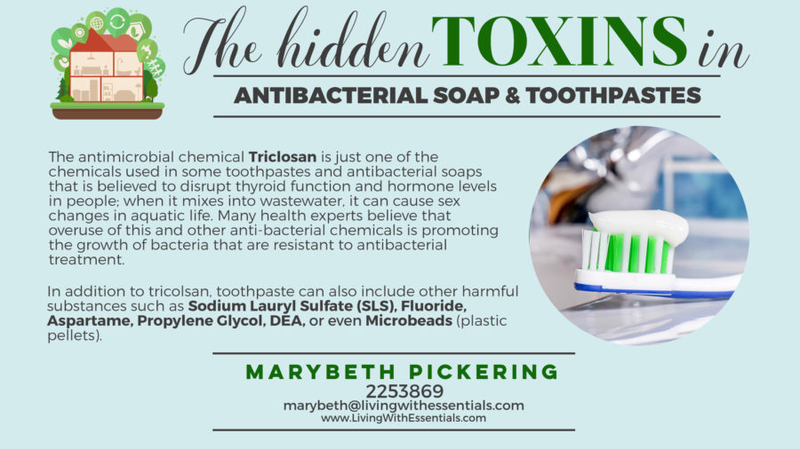 Toxin-Free Family Soaps and Toothpaste