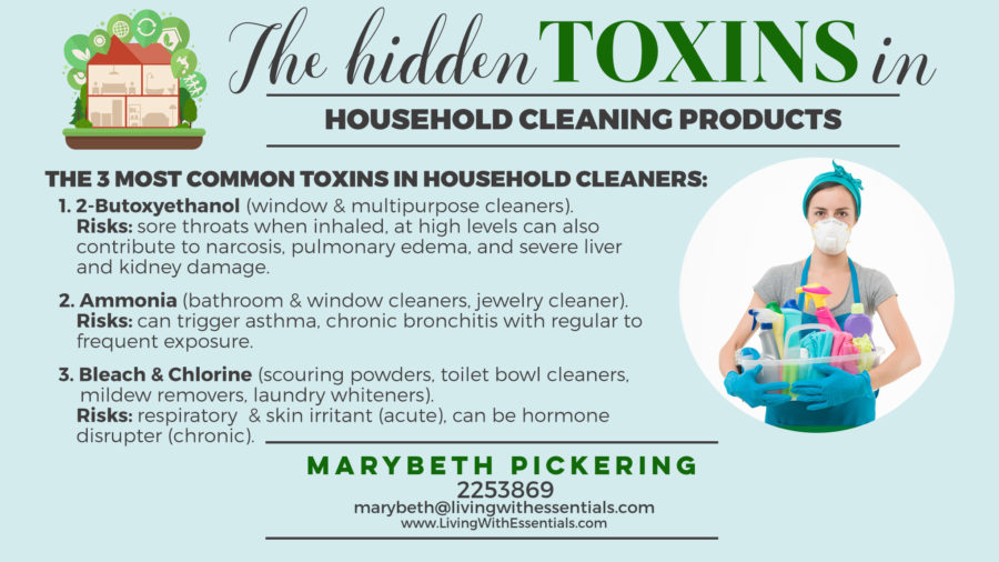Toxin-Free Family Cleaning Product Toxins