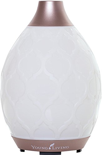 Desert Mist Diffuser by Young Living